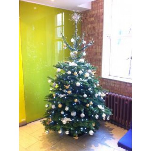 office christmas tree decorated